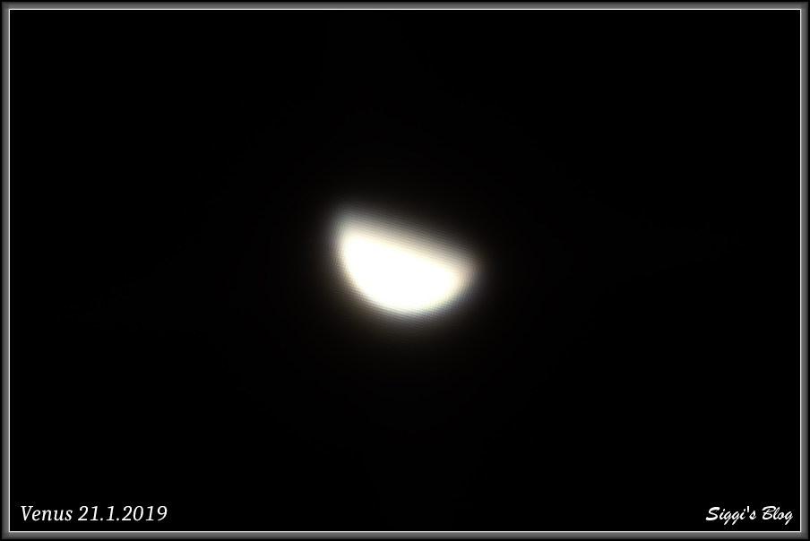190121 Venus