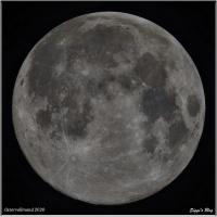 200408-1 Mond 99% APO kurz nach Aufgang (18 Luftmassen)