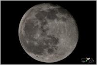 201231 Mond 96,6%