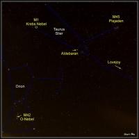 Orion-Stier